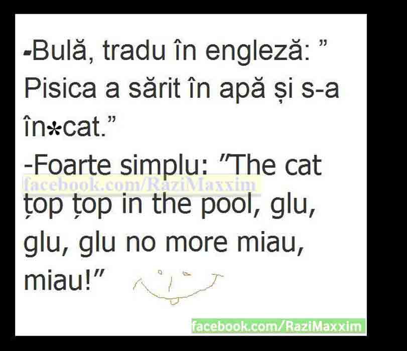 bula tradu in engleza pisica 2